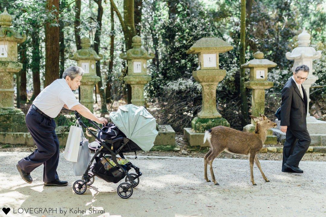 Naoya Family   家族写真(ファミリーフォト)