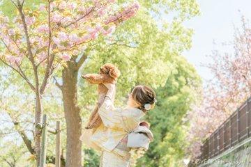 Ponzu × Hanami | 家族写真(ファミリーフォト)