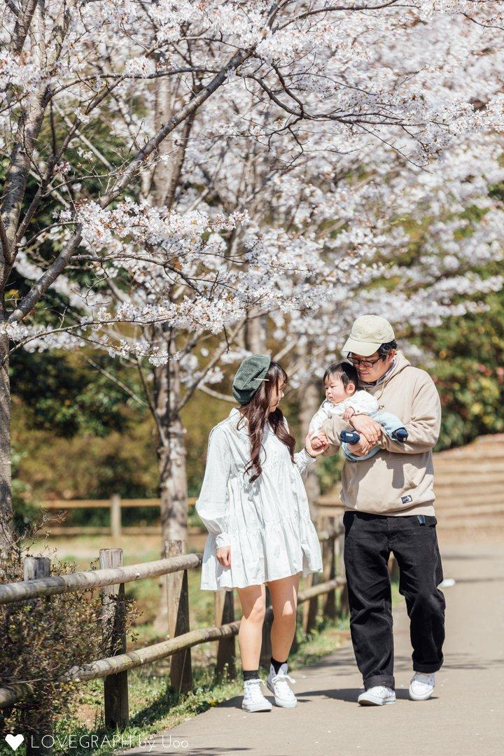 青くんと桜 | 家族写真(ファミリーフォト)