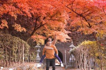 Io × Seiga   カップルフォト