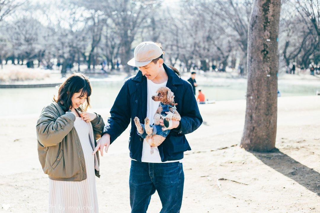 Akimoto Family | 家族写真(ファミリーフォト)