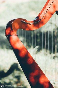sayako harp | .me(ドットミー)で撮影