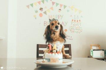 Ash's 14th Birthday | 家族写真(ファミリーフォト)