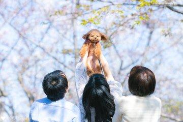 Maternity Family | 夫婦フォト